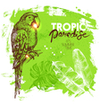 Hand drawn sketch tropical paradise plants and vector image vector image