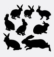 rabbit funny and cute animal silhouette vector image vector image