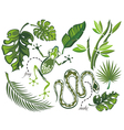 Set of tropical leaves and reptiles vector image