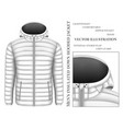 Mens hooded insulated down vector image