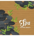 Stones and decoration Spa center design vector image