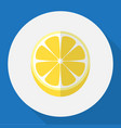of dessert symbol on lemon vector image