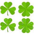 Set clover leaves isolated on white background vector image
