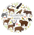 Circle set of plants and Yellowstone vector image