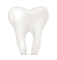 Tooth on a white background isolated vector image