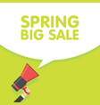 spring sale season announcement megaphone vector image