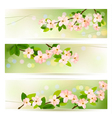 Three spring banners with blossoming tree brunch vector image