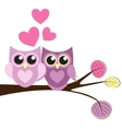 Cute Owl Pattern Background for Valentines Day vector image