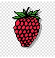 Raspberry sketch on transparent background for vector image vector image