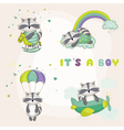 Baby Racoon Set - Baby Shower or Arrival Card vector image