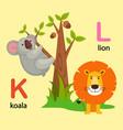 isolated alphabet letter k-koala l-lion vector image