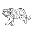 tiger outlined vector image
