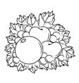 Autumnal harvest vector image