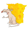 cute rat and cheese cartoon vector image
