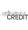 What happens when your credit is damaged text vector image