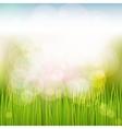 Natural spring background vector image