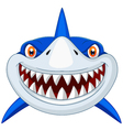 Shark head cartoon vector image vector image