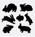 Rabbit animal action silhouette vector image
