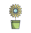 Sunflower with petals inside to flowerpot vector image