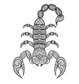 Scorpion coloring book vector image