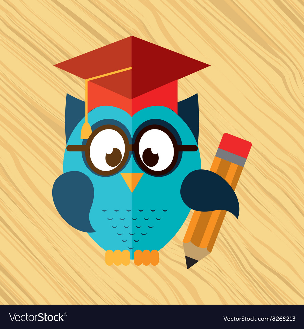 Owl bird design vector