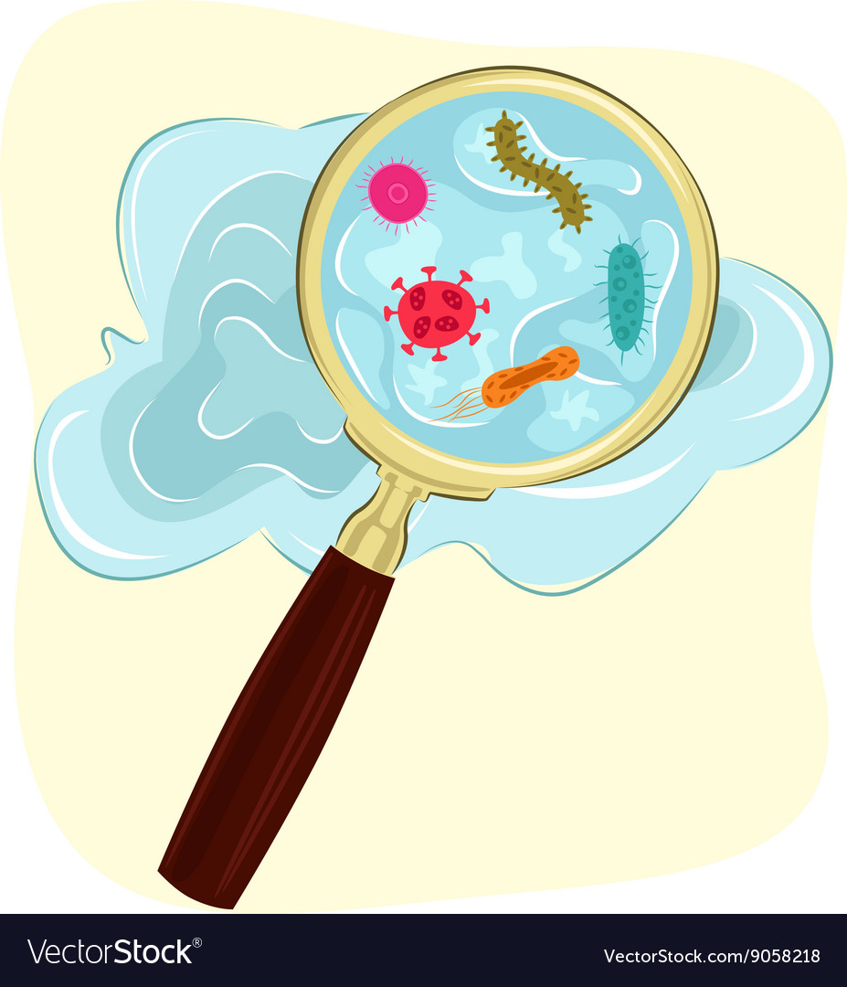 Germs and bacteria under magnifying glass vector