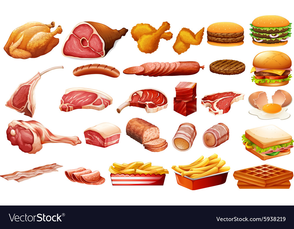 Different kind of meat and food vector