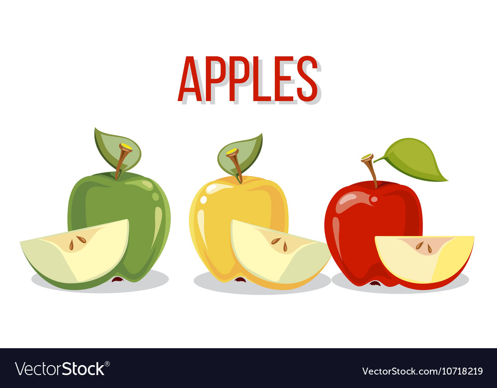 Three apples with slices isolated over white vector