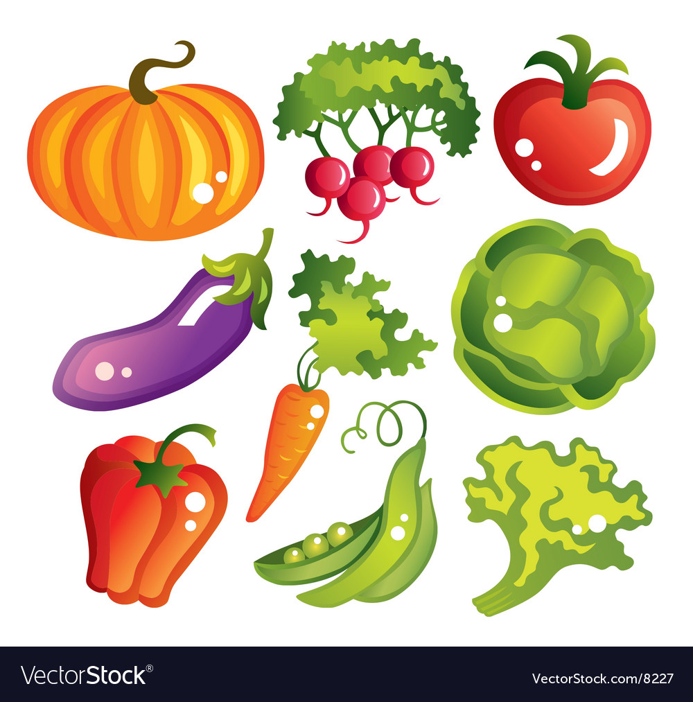 Vegetables design vector
