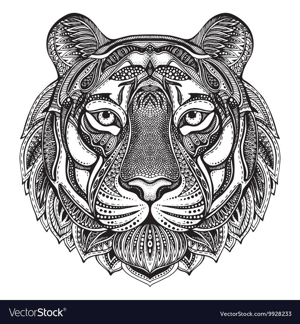Hand drawn graphic ornate tiger vector