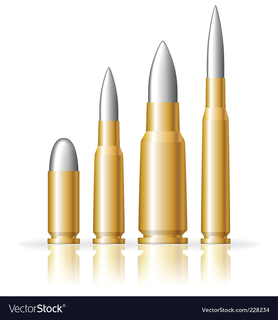 Set of bullets vector