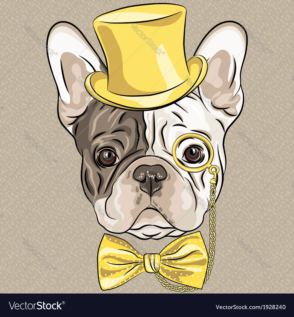 Hipster dog french bulldog breed vector