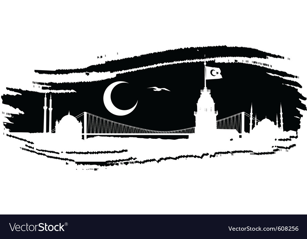 Istanbul silhouette vector