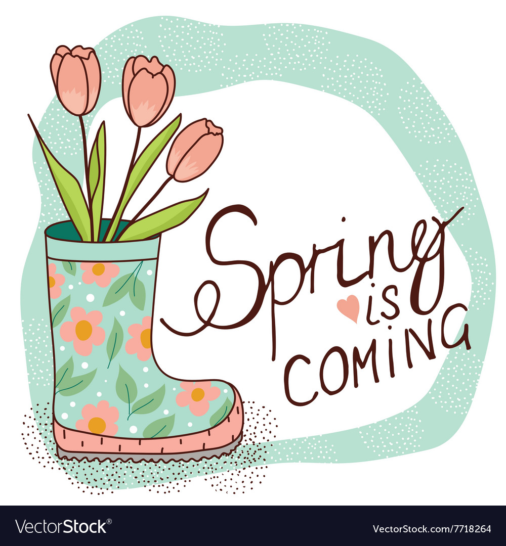 Spring rain boots with tulips vector