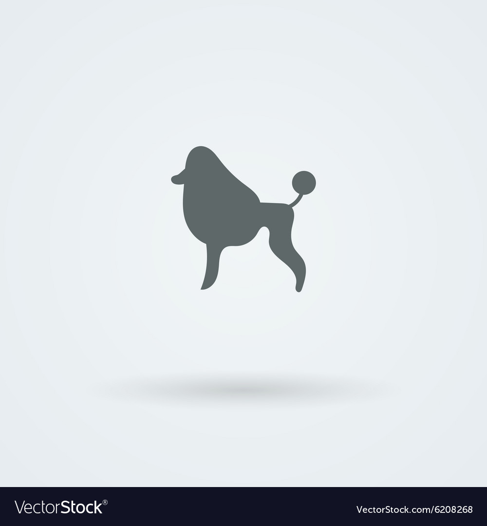Minimalist simple icon with a picture of a poodle vector