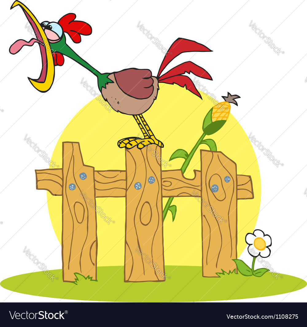 Cock crowing stepped on the fence vector