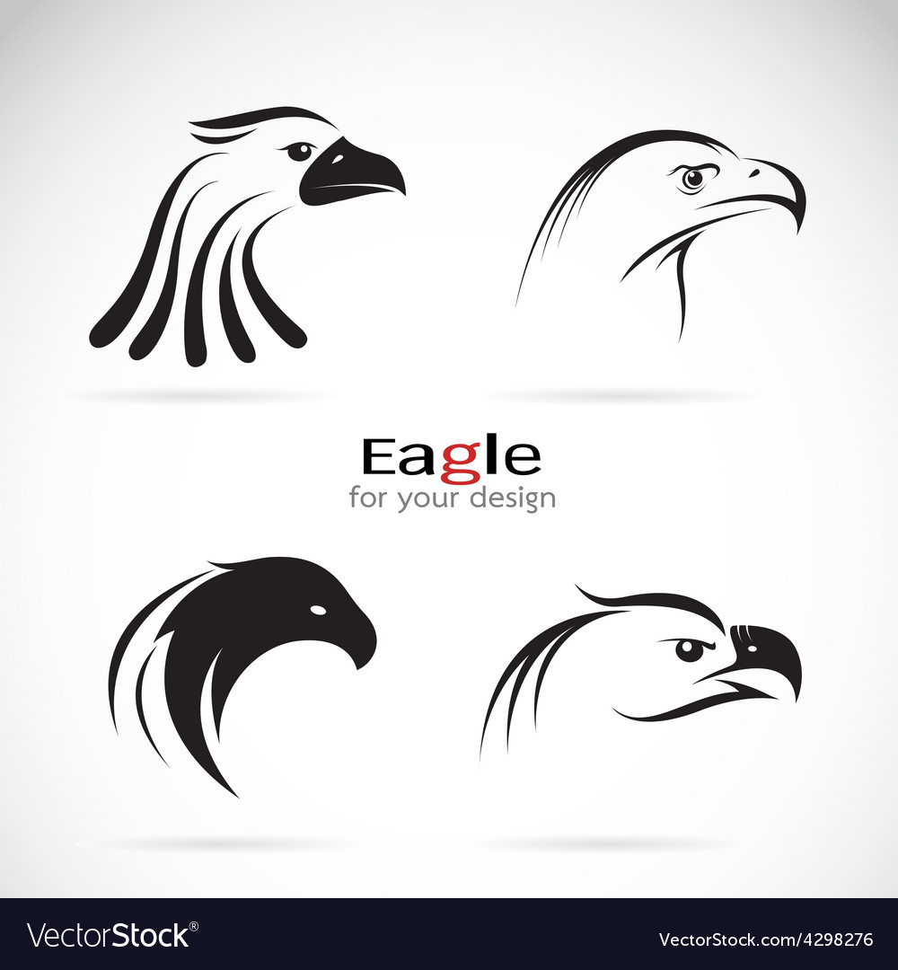 Group of eagle head design vector