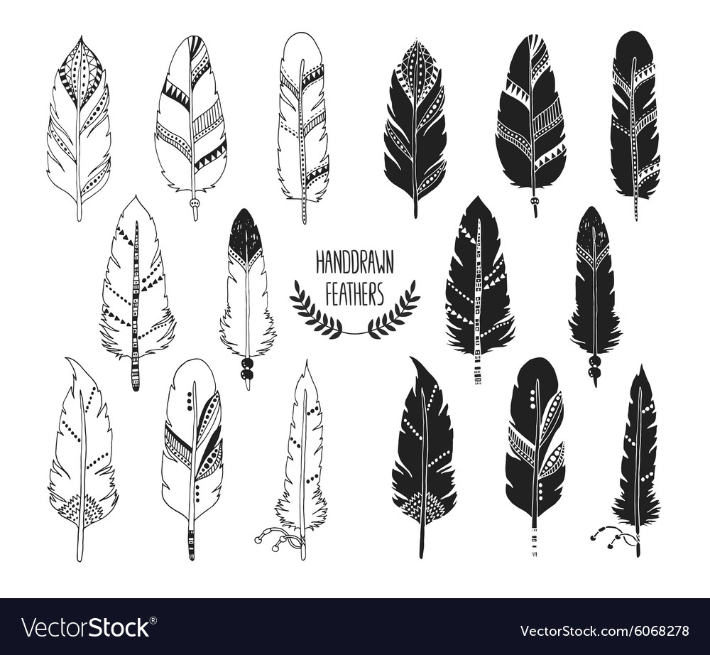 Hand drawn set of feathers and silhouette vector