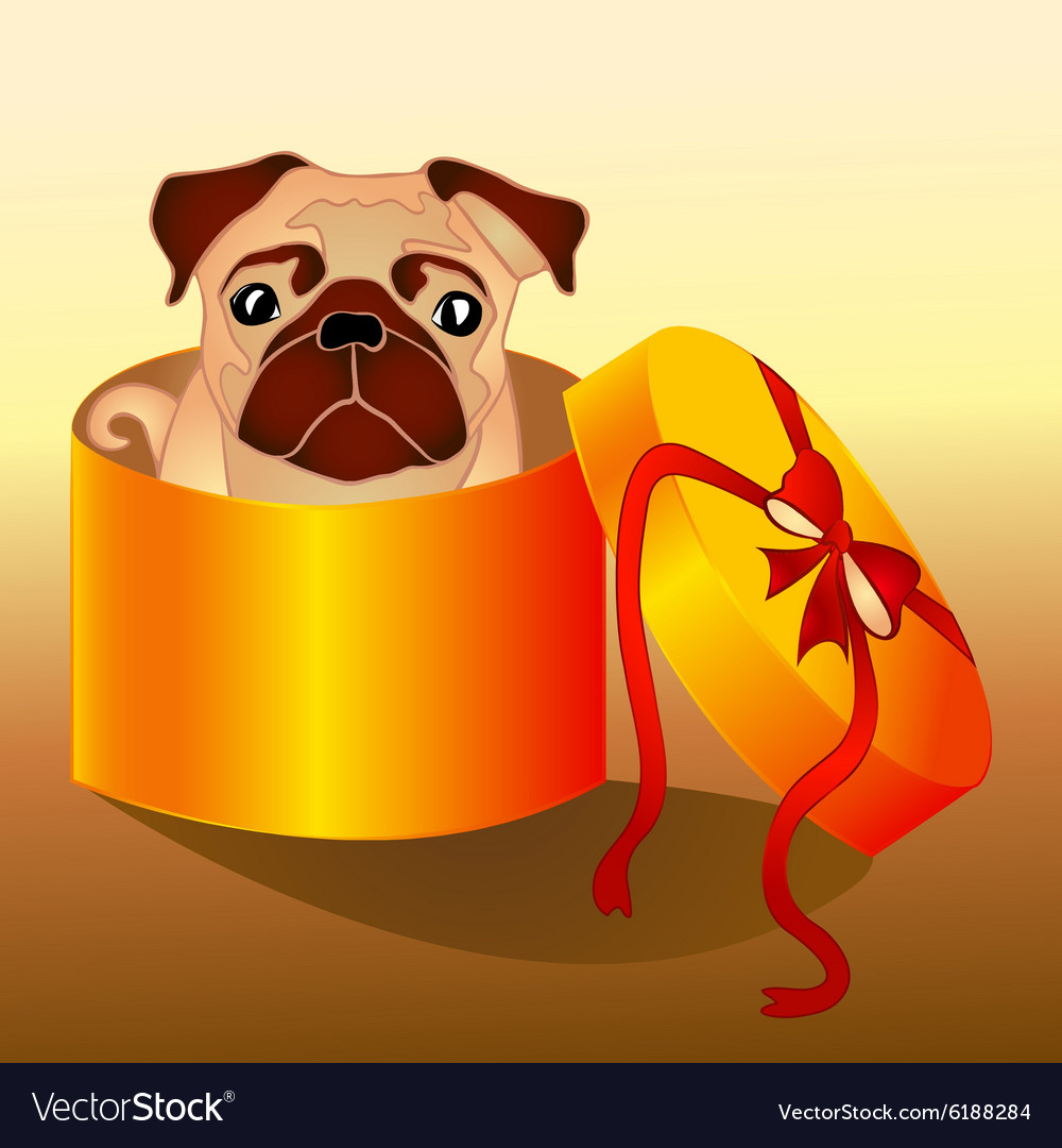 Dog in the box vector