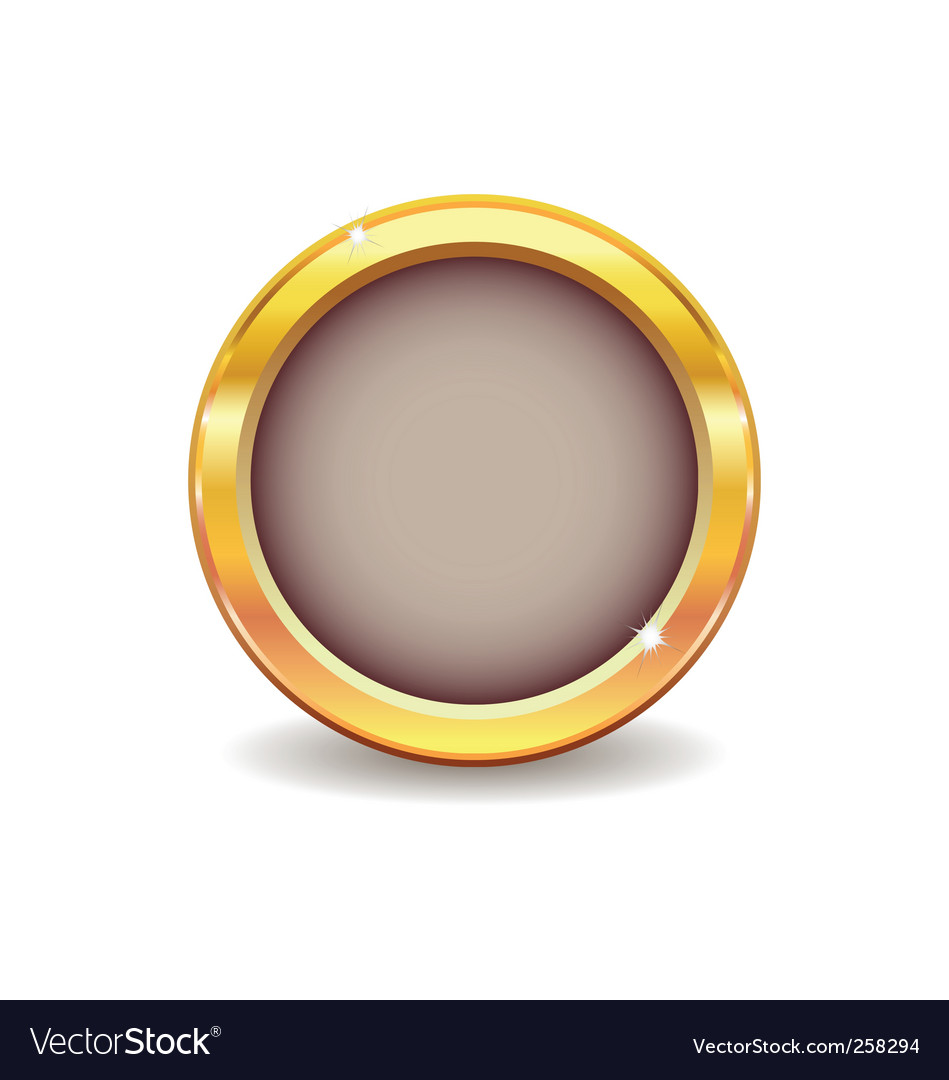Metal gold button vector