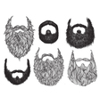 Hand Drawn Beard Set vector image vector image