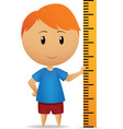 cartoon man with ruler straightedge vector image
