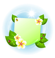 Note with ladybird and flowers vector image