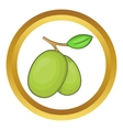 Olive branch icon vector image