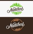 set of natural hand written lettering logo vector image