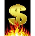 dollar on fire vector image