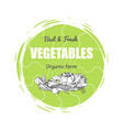 best and fresh vegetables vector image