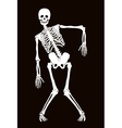 Skeleton vector image vector image