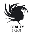 logo girl with flying hair for beauty salon vector image