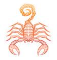 colorful ornate zodiac sign scorpio vector image